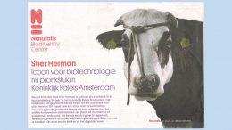 advertentie naturalis met stier herman
